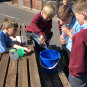 Year 5 capacity and volume investigation