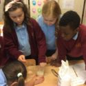 Year 5 Science!