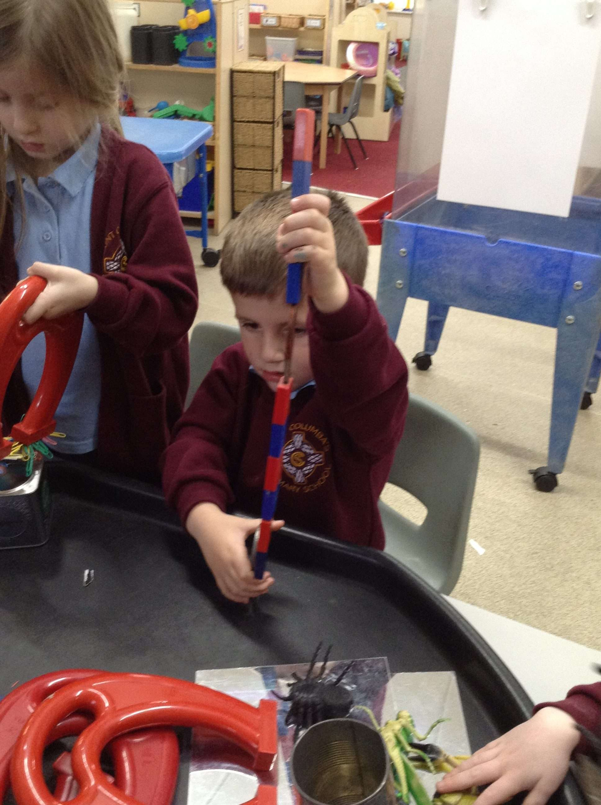 A Science afternoon in Reception