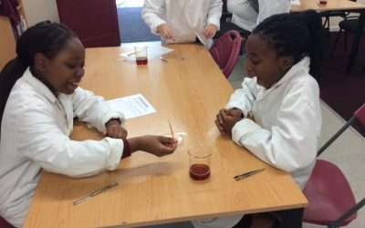 How to live longer…Y6 science…23rd Sept